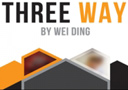 Vuelta magia  : DVD Three Way