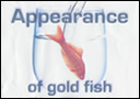 article de magie Appearance of gold fish