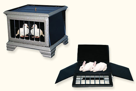 Automatic Dove to rabbit Cage