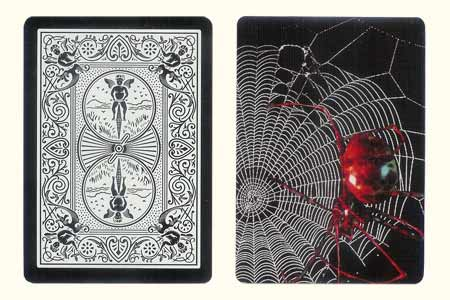 Spider on the Spider web BICYCLE Card
