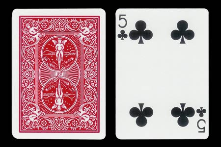 5 of Clubs with 1 Clubs missing BICYCLE Tiger Card