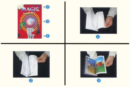 Animal Magic Book