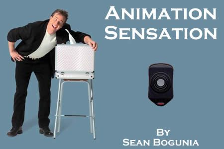 The Animation Sensation de S.Bogunia