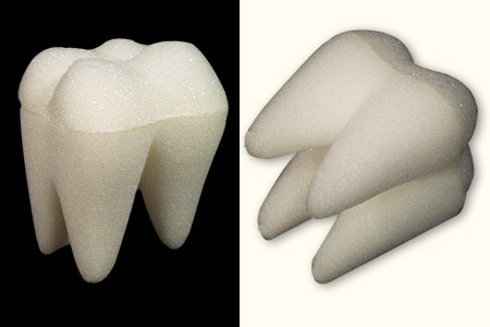 Small Sponge Tooth