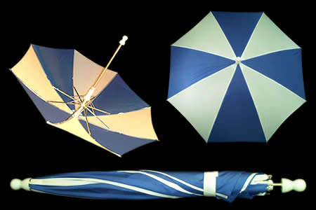 Blue and White appearing umbrella - unit